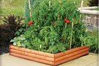 A raised garden bed can be readily stocked with abundant tomatoes and herbs to readily supply a family kitchen. Photo/File