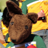 An Australia supporter, dressed as a kangaroo, waits for the start of the World Cup group D soccer match between Ghana and Australia at Royal Bafokeng Stadium in Rustenburg, South Africa. Photo / AP