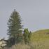 Mt Hobson. Photo / NZ Herald