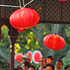 Lanterns at the Chinese Lantern Festival in Auckland. Photo / NZ Herald