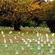 War graves at Vicksburg. Photo / Ian McKinnon