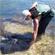 Dive Tatapouri runs tours which include stingray feeding. Photo / Supplied