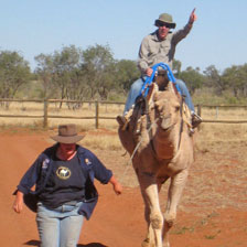 """No prisoners"". Greg Dixon rides Goldies at the Stuart's Well camel farm, an hour south of Alice, NT. Photo / Greg Dixon"