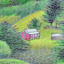 Don Binney painting of cabins at Te Henga/Bethells. Photos / Patrick Reynolds