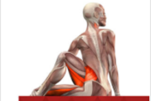 All-in Yoga app. Photo / iTunes