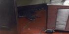 Man throws alligator into drive-through