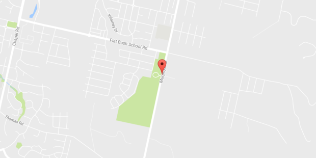 A fiery truck crash has brought down powerlines cutting electricity to South Auckland suburbs. Photo / google maps
