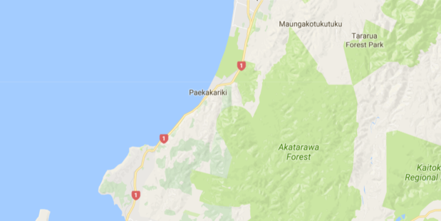 A police chase spanning some 30km down SH1 ended in Plimmerton when the fleeing vehicle ground to a halt. Photo / via google maps