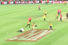 Security try to stop a streaker. Photo / Twitter