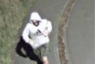 The man police are hunting was wearing a grey Adidas hoodie at the time of the assault. Photo / NZ Police