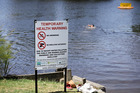 A newly-erected 'no swimming' sign at Wairoa River bridge was not enough to deter people from swimming, despite the risk of picking up E.coli contamination. Photo/Andrew Warner