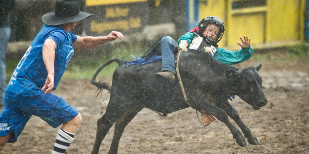 Leroy Pertab competes in the calf riding. Photo/Stephen Parker