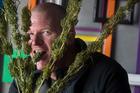 Chris Woodney with harvested hemp plants. PHOTO/BEN FRASER