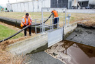 Pollution in the Tyne Street drain leading into the Ahuriri estuary in Napier last year. Photo / File