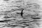 Officials have put a plan in place if the Loch Ness Monster is ever caught. Photo / Getty Images