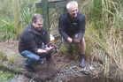 Kevin Evans from the Pāteke Recovery Group (left) and Rainbow Springs Wildlife Programme manager Mark Paterson get ready to release the pāteke. Photo/Shauni James