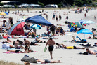 The updated bylaw, which replaces the Beaches Bylaw 2007, will come into force from December 1. Photo / File