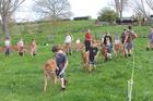 Pāterangi children practise leading their calves ahead of this weekend's private calf club.