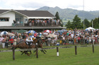 Flashback 2009: Pirongia Boxing Day races are a tradition and attract  crowds.