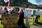 An anti-1080 protest in Whanganui in September. Photo / Bevan Conley