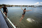 Kids jumping off the Waitangi Bridge, a site deemed unsafe for swimming after water quality testing. Photo / Dean Purcell