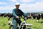 There's no need for Mark Anderson to fuel up before shifting cattle at Westridge Farm, because his motorbike is electric. Photo / Ella Stokes