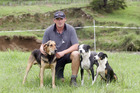 Okaihau man Shaun Haynes - shown here at the Broadwood trials last year with dogs Reg, Doc and Millie - and Millie placed in the short head and yard event at the Bay of Islands sheep dog trial last weekend.Leo [Jecentho, of Whatawhata] is proving to be a thorn in our sides.