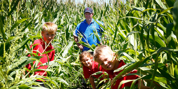 Loading Lorcan Honeyfield (8), Lexie Harrison (7), Wesley Smith (5) and school board chair Andrew Hurley led the way through the maze. Photo/ Bevan Conley
