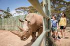 Monarto Zoo, Adelaide. Photo / Zoos SA