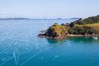 Win a family trip to Waiheke Island!