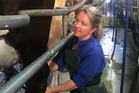 Sophia Clark in the milking shed. Photo / Supplied