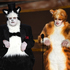 'Cats' Oscars joke made by James Corden and Rebel Wilson offends Visual Effects Society